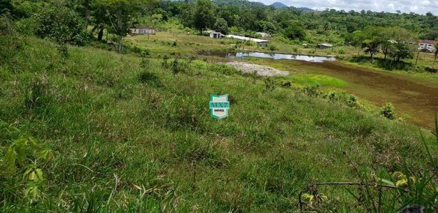 Camacan. Fazenda de Cacau com 430 Hectares. Rica em água - Foto 11