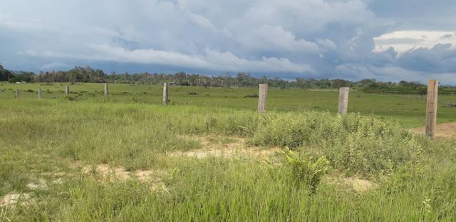 Fazenda bem estruturada - Foto 12
