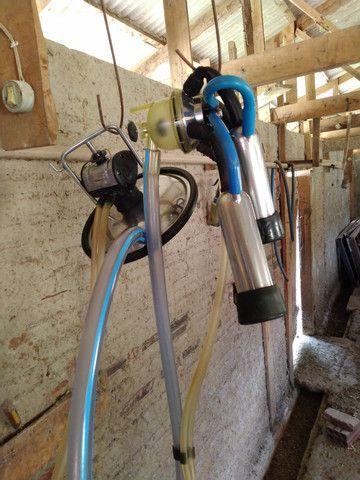 Resfriador reafrio 500 litros, ordenhadeira dois conjuntos - Foto 5