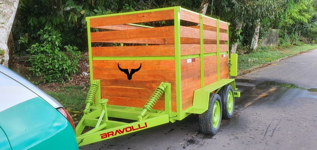 Carretinha 2 eixos ' Brasil é BRAVOLLI  - Foto 3