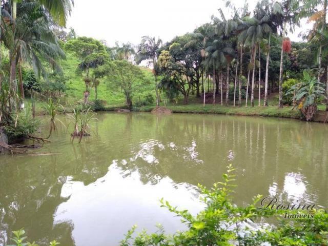 Chácara com 3 dormitórios à venda, 24189 m² por r$ 320.000,00 - rio sagrado - morretes/pr - Foto 16