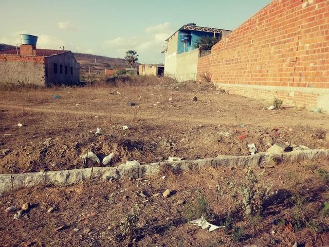 Vendo 2 terrenos loteamento Benjamim - Foto 4