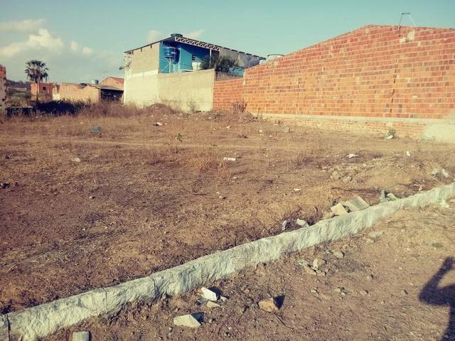 Vendo 2 terrenos loteamento Benjamim - Foto 6