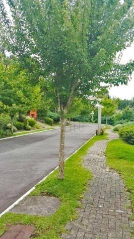 Terreno à venda, 869 m² por r$ 180.000,00 - lago negro - gramado/rs - Foto 6
