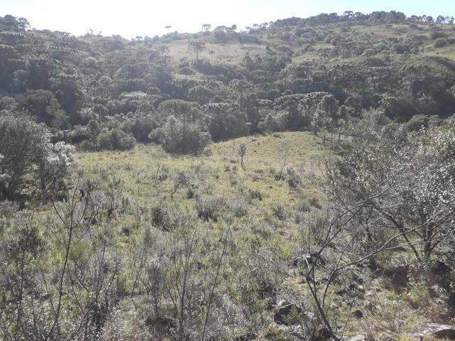 Terreno em Urupema - Foto 13
