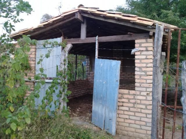 Excelente sítio, com casa sede e casa de caseiro na região de Santo Estevão Bahia - Foto 5