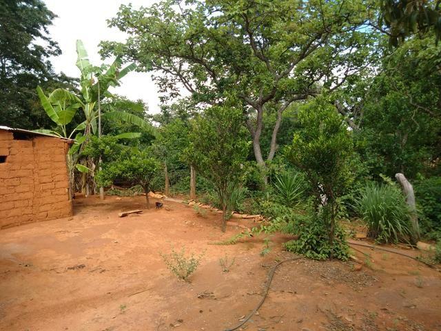 Vendo Chácara na Comunidade Rural de Extrema em Bocaiuva-Mg - Foto 4