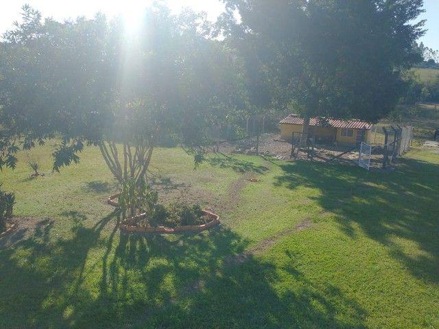 Chácara, Sítio, a Venda com 22.000 m² com 4 Quartos, Sendo 1 Suíte, Toda Formada a 3 km da - Foto 20