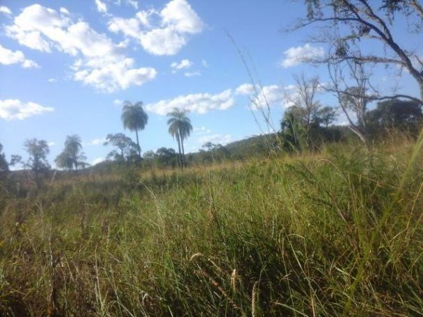Fazenda 24 Alquires 180km de Brasilia e 24 km de santa Rosa