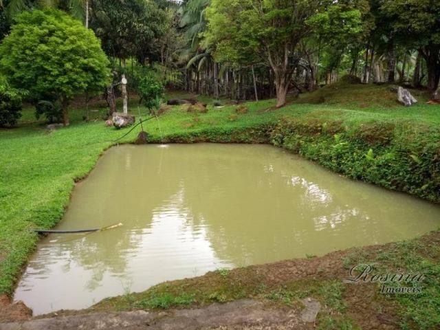 Chácara com 3 dormitórios à venda, 24189 m² por r$ 320.000,00 - rio sagrado - morretes/pr - Foto 8