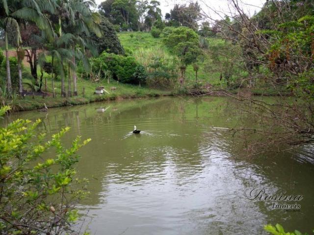 Chácara com 3 dormitórios à venda, 24189 m² por r$ 320.000,00 - rio sagrado - morretes/pr - Foto 12