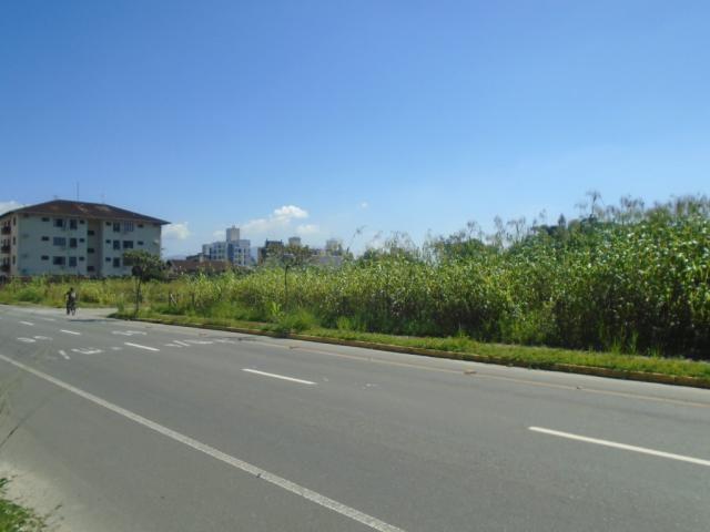 Terreno para alugar em America, Joinville cod:08039.001