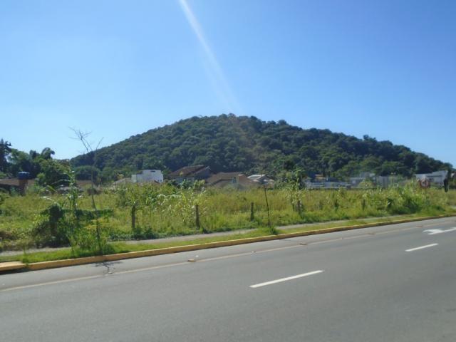 Terreno para alugar em America, Joinville cod:08039.001 - Foto 6