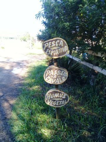 L-Loteamento Localizado a 500m da Rodovia Amaral Peixoto em Unamar - Tamoios - Cabo Frio! - Foto 6