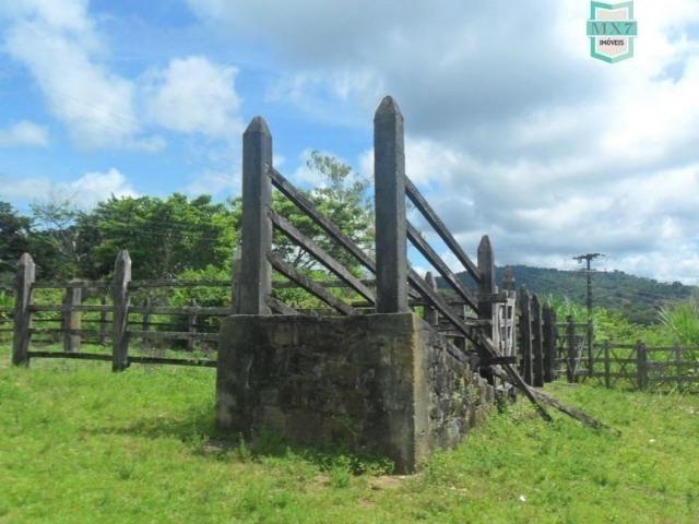 Ilhéus. Fazenda de 200 Hectares, produtora de cacau com toda infraestrutura. - Foto 7