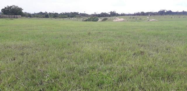 Fazenda bem estruturada - Foto 11