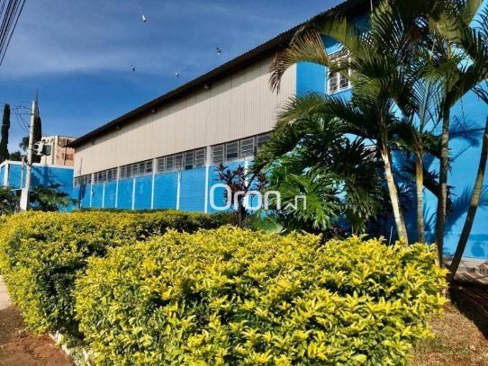 Galpão à venda, 1400 m² por R$ 2.000.000,00 - Jardim Helvécia - Aparecida de Goiânia/GO - Foto 3