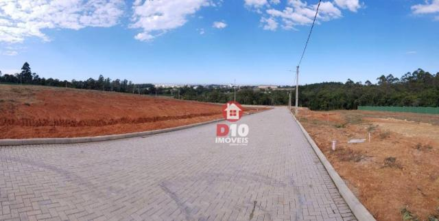 Terreno à venda, 800 m² por R$ 331.398 - Argentina - Criciúma/SC - Foto 17