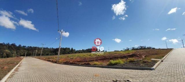 Terreno à venda, 800 m² por R$ 331.398 - Argentina - Criciúma/SC - Foto 20