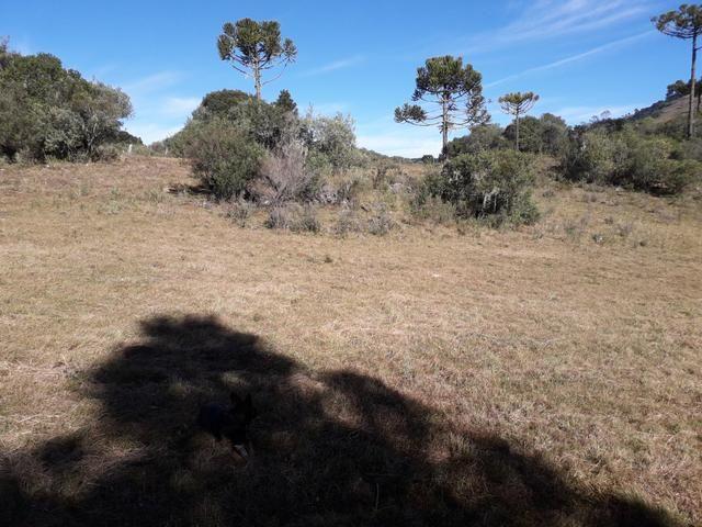 Terreno em Urupema - Foto 3