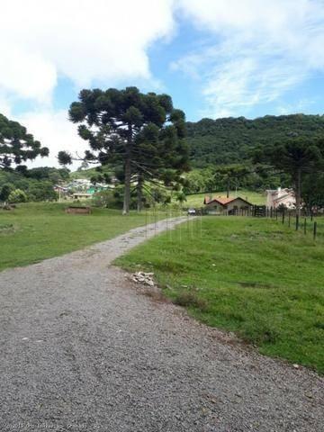 Sítio à venda, 4 m² por r$ 2.156.000 - serra grande - gramado/rs - Foto 9