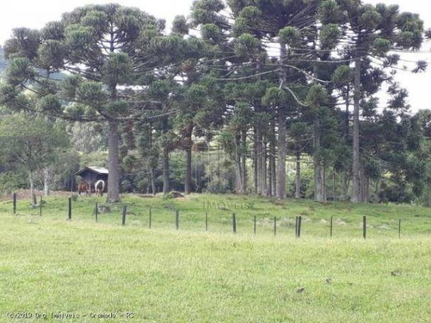 Sítio à venda, 4 m² por r$ 2.156.000 - serra grande - gramado/rs - Foto 13
