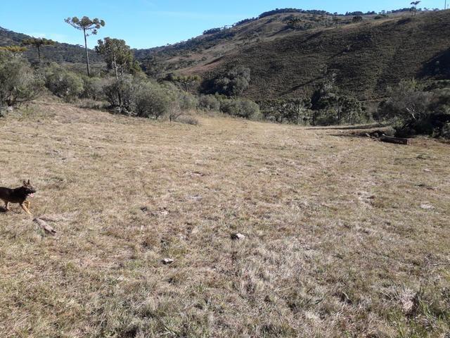 Terreno em Urupema - Foto 6