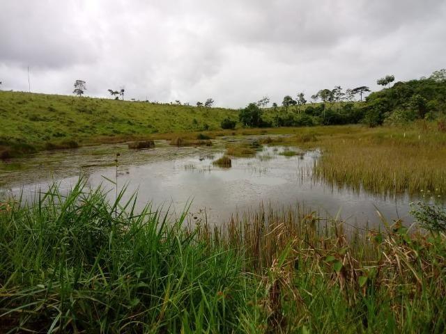 Vende-se uma propriedade rural em Maraú - Foto 5