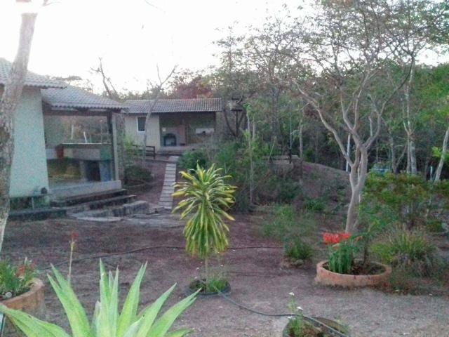 Chácara 3 hectares - Foto 4