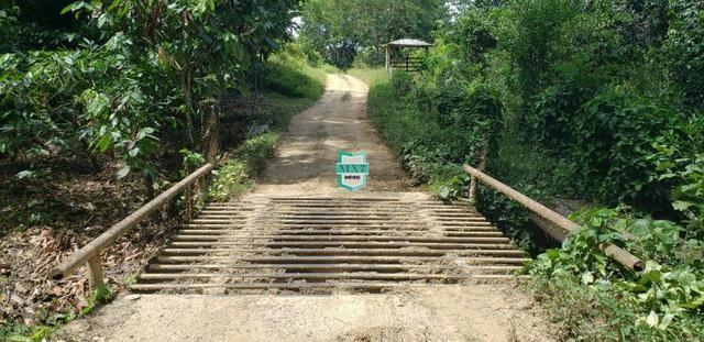 Camacan. Fazenda de Cacau com 430 Hectares. Rica em água - Foto 5
