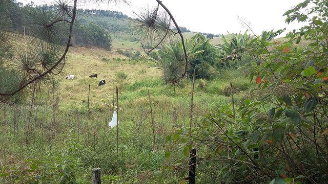 Fazenda córrego alto Duas Barras RJ  - Foto 11