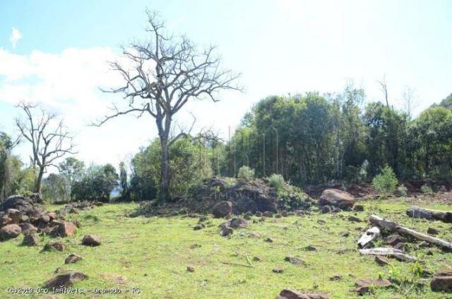 Sítio à venda, 45000 m² por r$ 897.000,00 - linha bonita - gramado/rs - Foto 4