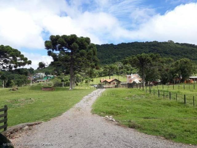 Sítio à venda, 4 m² por r$ 2.156.000 - serra grande - gramado/rs - Foto 3