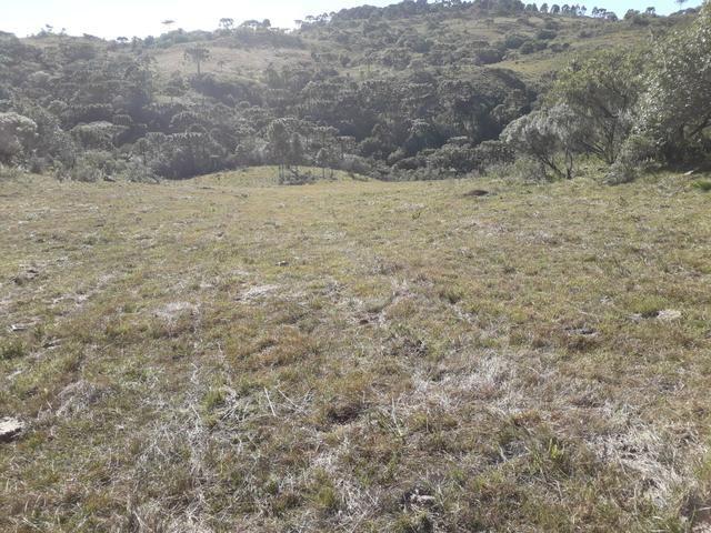 Terreno em Urupema - Foto 19