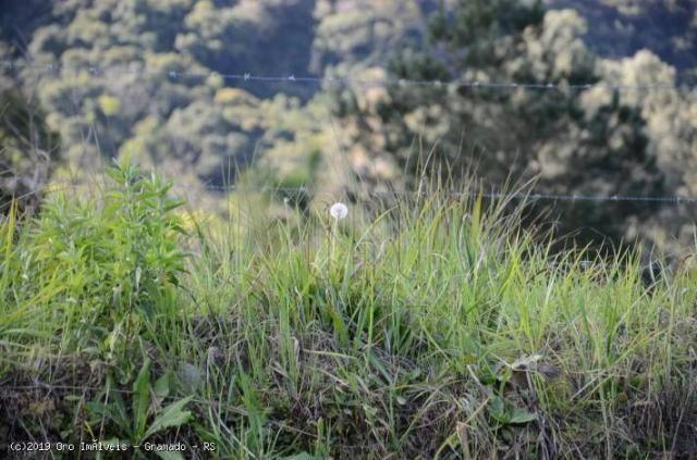 Sítio à venda, 45000 m² por r$ 897.000,00 - linha bonita - gramado/rs - Foto 16