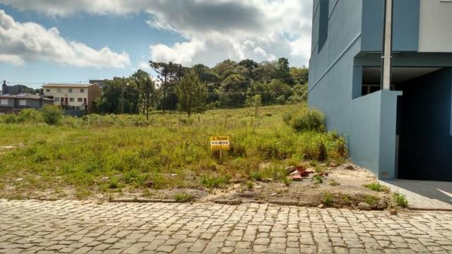 Terreno Bairro São Luis - Foto 2