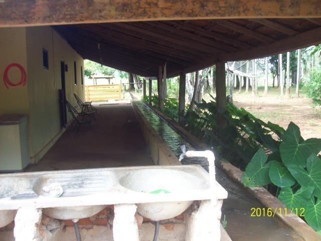 Chácara em Anicuns, 2 Alqueires e 37 Litros de Pura Beleza e Encantamento, Rica em Água - Foto 7