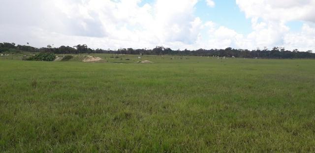 Fazenda bem estruturada - Foto 2