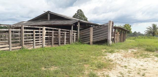 Fazenda bem estruturada - Foto 13