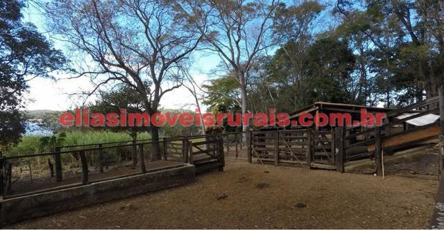 Fazenda margens represa Furnas - Corumbaíba GO - Foto 15