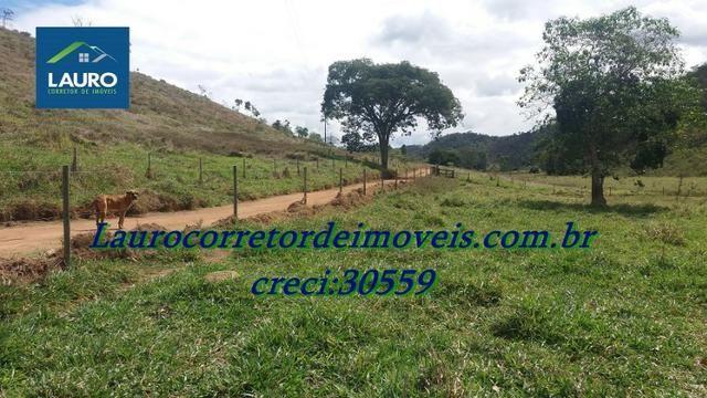 Fazenda com 29 Hectares à 28 km de Teófilo Otoni-MG. - Foto 16