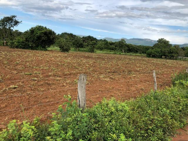 Fazenda em Rosário Oeste 1.460 hectares á venda - Foto 2
