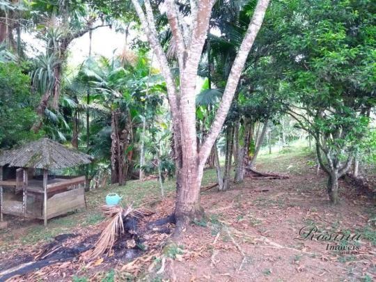 Chácara com 3 dormitórios à venda, 24189 m² por r$ 320.000,00 - rio sagrado - morretes/pr - Foto 20
