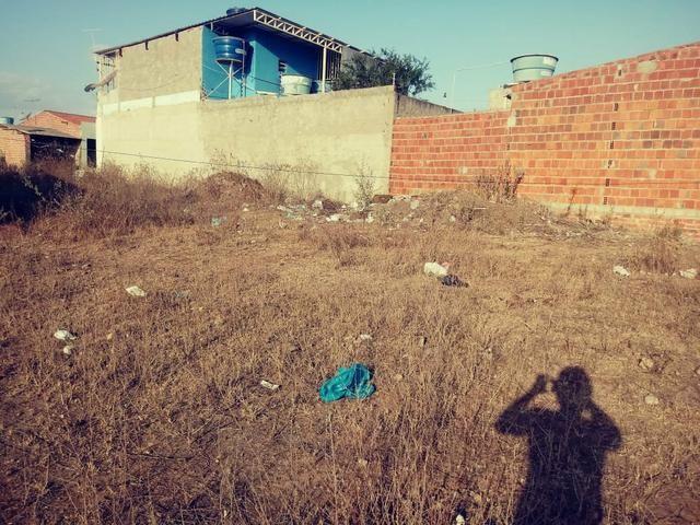 Vendo 2 terrenos loteamento Benjamim - Foto 2