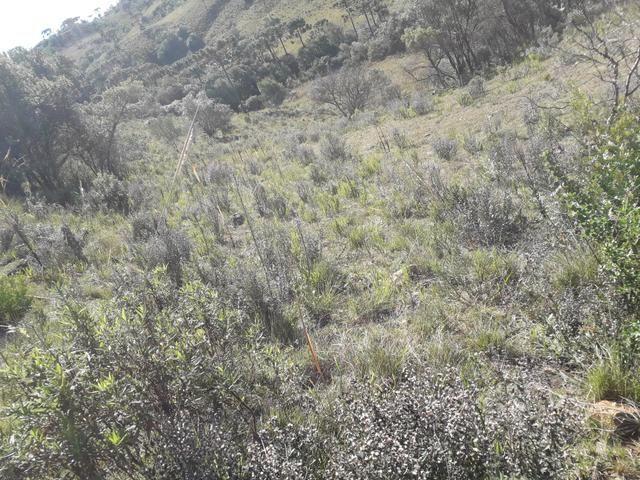 Terreno em Urupema - Foto 20