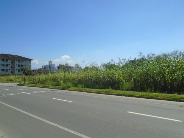 Terreno para alugar em America, Joinville cod:08039.001 - Foto 2