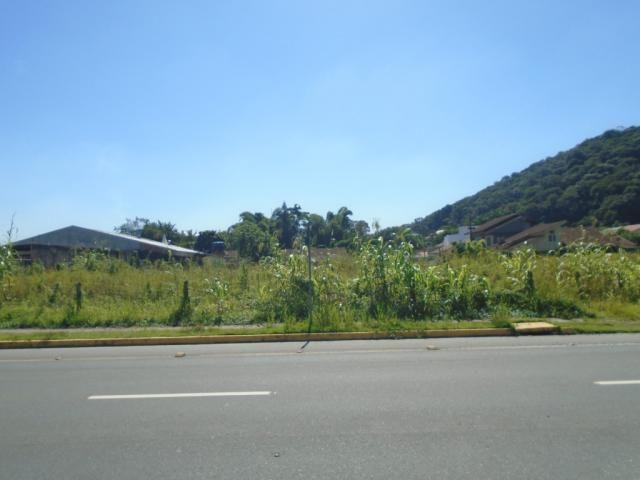 Terreno para alugar em America, Joinville cod:08039.001 - Foto 8