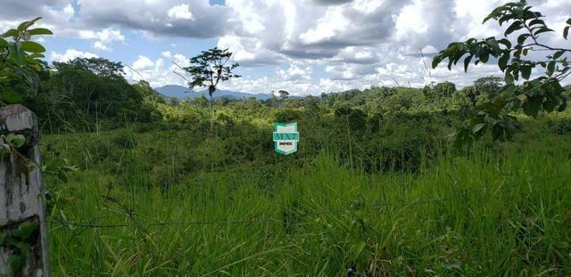 Camacan. Fazenda de Cacau com 430 Hectares. Rica em água - Foto 9