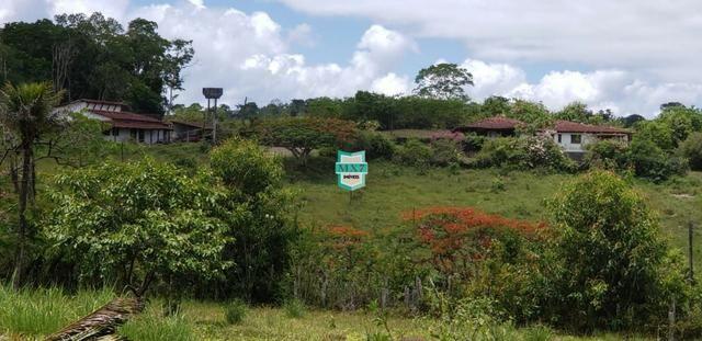 Camacan. Fazenda de Cacau com 430 Hectares. Rica em água - Foto 13