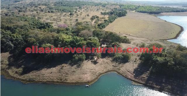 Fazenda margens represa Furnas - Corumbaíba GO - Foto 13